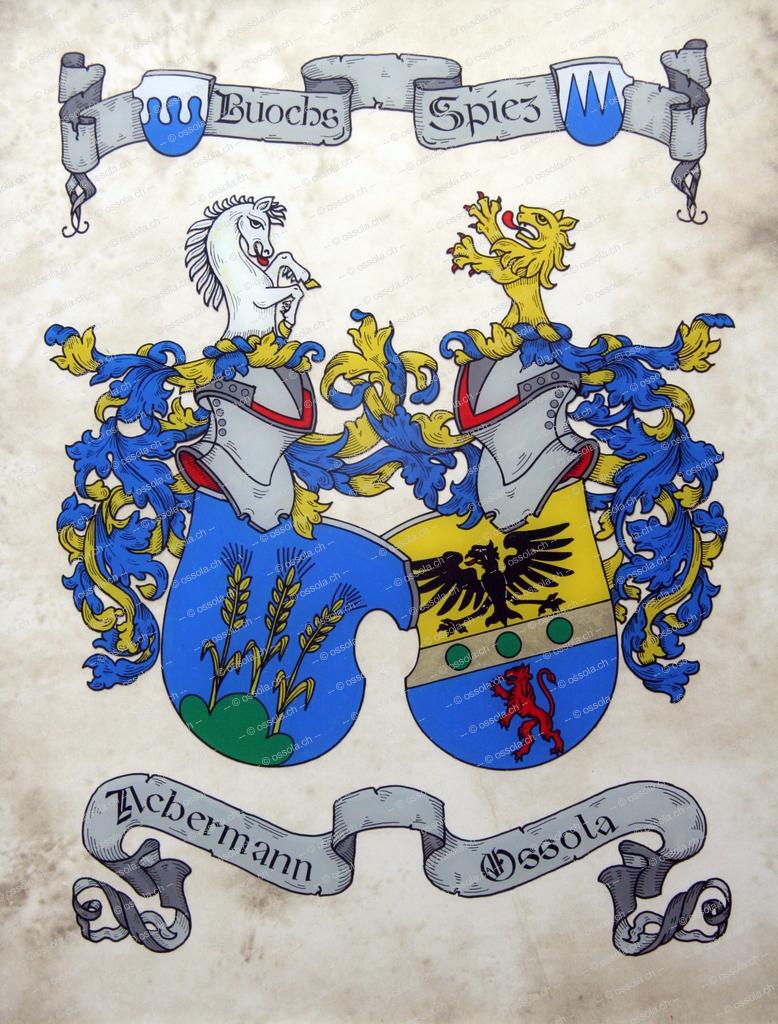 Heraldik160